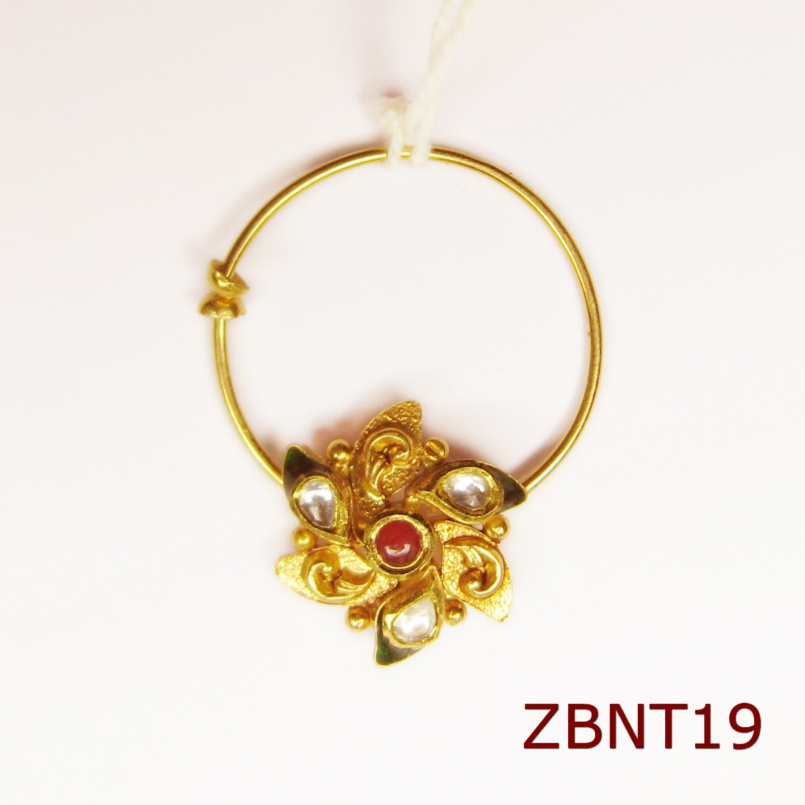ZBNT19