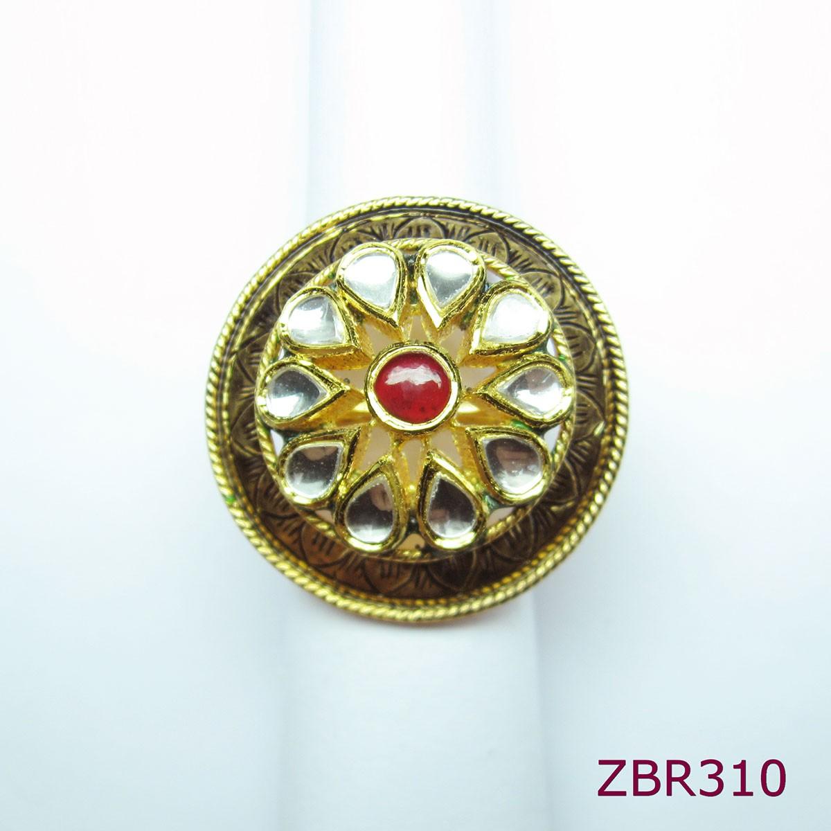 ZBR310